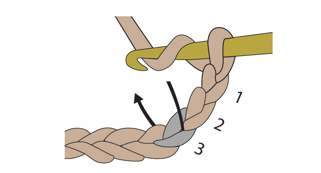 Crochet into the correct chain and make a turning chain